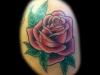 colorrose